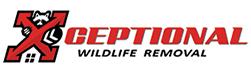 Fort Thomas Wildlife Removal